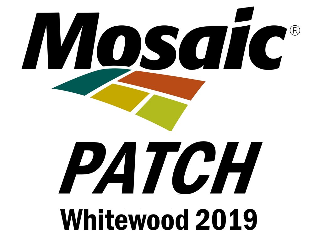 Your event pass gets you into the MOSAIC PATCH at the Whitewood Community Centre. Come for awesome bands, fun games and a great time!