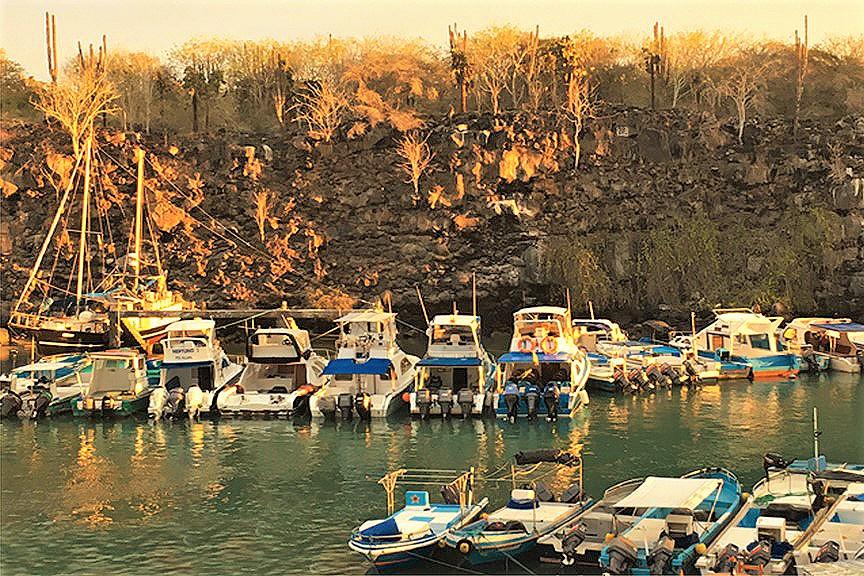 Boats and lava, Santa Cruz_sharpened.jpg