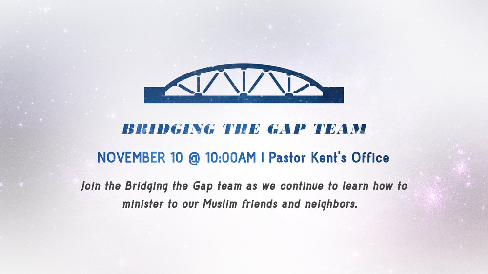 Bridging the Gap Team.jpg