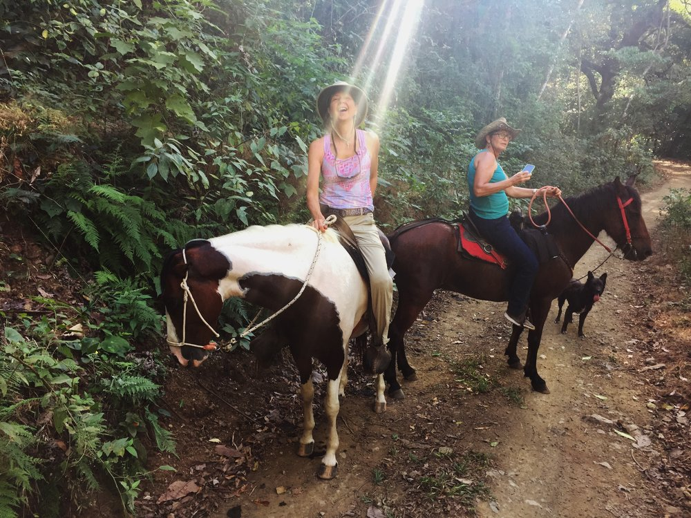 I'm not sure if the light is coming from Sharon or going to her, but either way she's the light of my life!  A wonderful local guide named Gabrielle took us horseback riding. She was quite knowledgeable about the ecosystem.