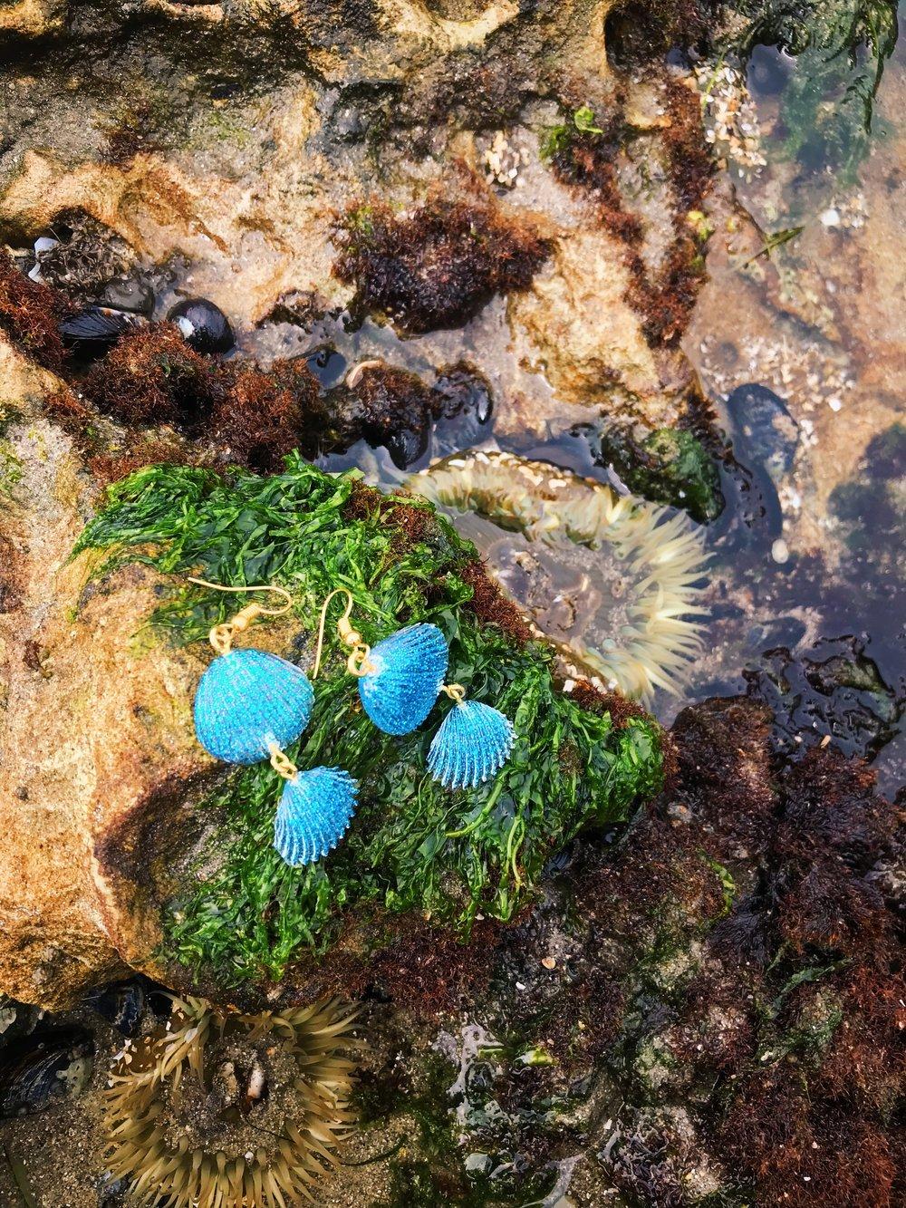 Cameron Clownfish Earrings
