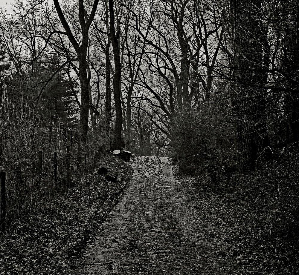 scary-664783_1920.jpg