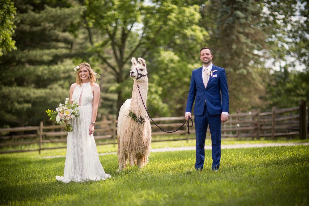 Meredith & Eric ( Wedding by Two - Brandon Jone  s )