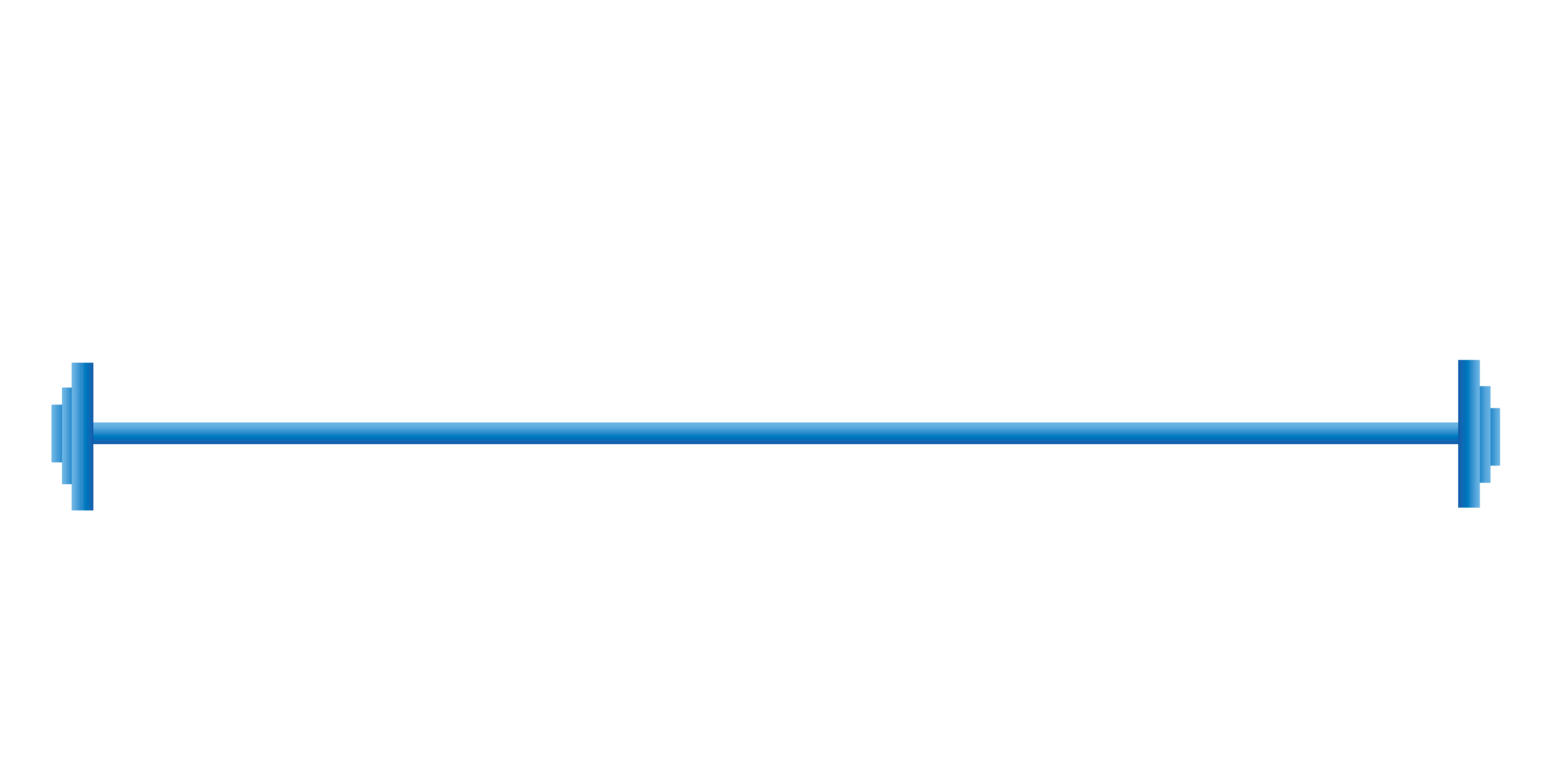 Blue Chip Performance