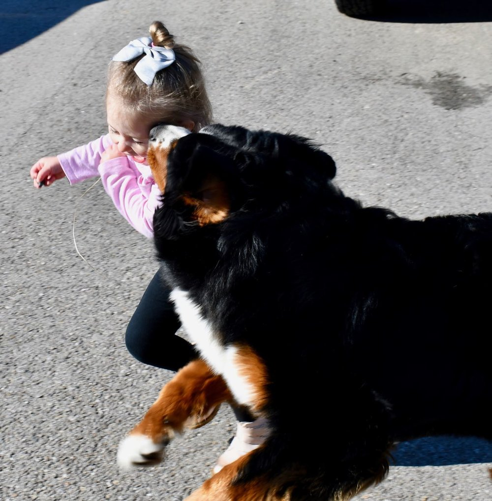 """""""The dog was created specially for children. He is the god of frolic."""" – Henry Ward"""