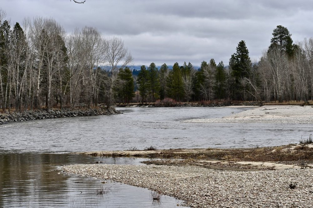 Bitterroot River April 2019.jpg