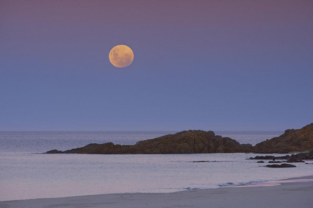 004_20180131_STOCK_Full Moon Rising over bunker Bay.jpg