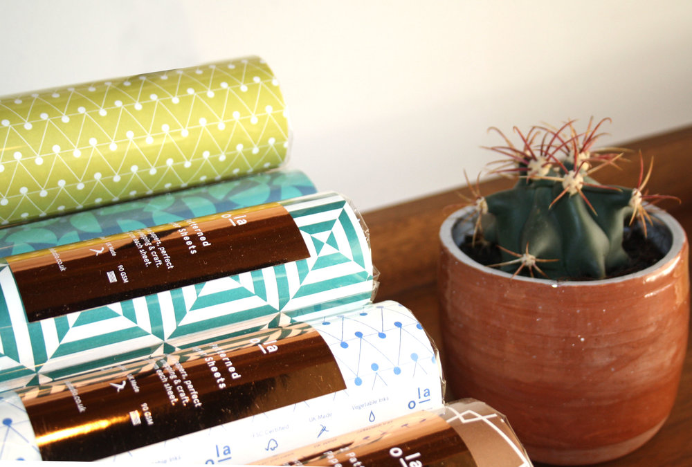 Ola and Cactus.jpg
