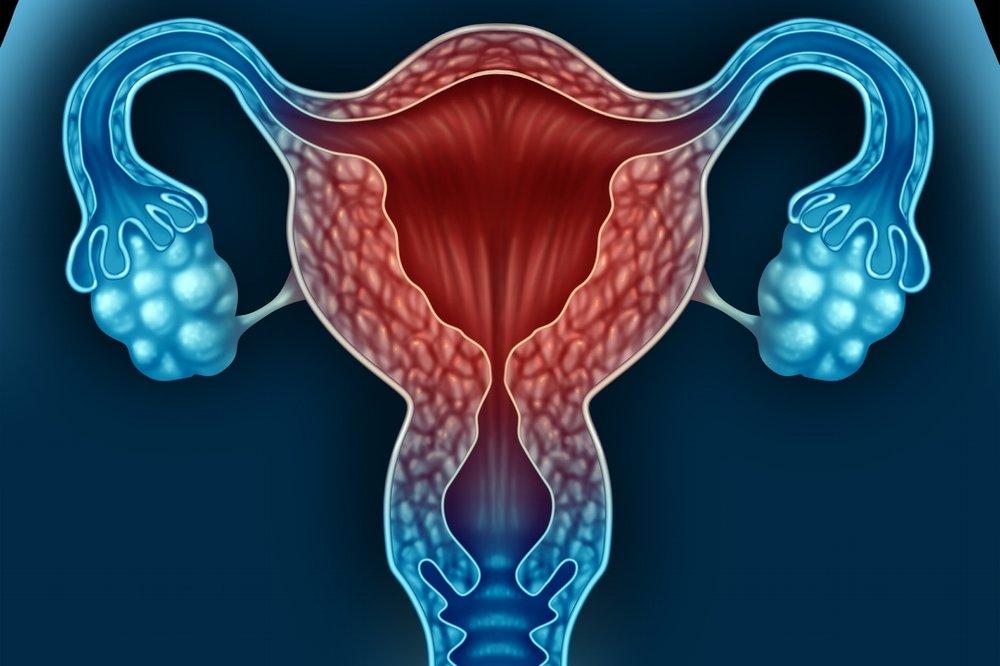 Blutungsanomalien - Was ist eine normale Menstruationsblutung?Dauer: bis zu 8 TagenIntervall: zwischen 24 und 38 TagenRegelmäßigkeit: Unterschiede im Intervall nicht mehr als 9 TageIntensität: Binden oder Tampons müssen meist nicht öfter als alle 3 Stunden gewechselt werden, Binden oder Tampons müssen selten in der Nacht gewechselt werden, pro Zyklus müssen meist nicht mehr als 21 Binden oder Tampons verwendet werden, eine zu schwache Menstruationsblutung ist selten besorgniserregend