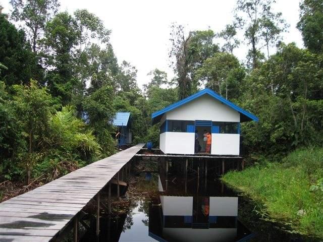 Camp Buluh