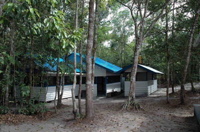 Pondok Ambung Tropical Forest Research Station
