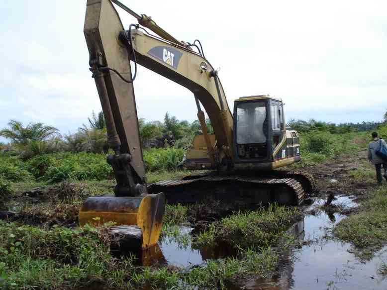 Tripa Swamp -Digging drainage canals