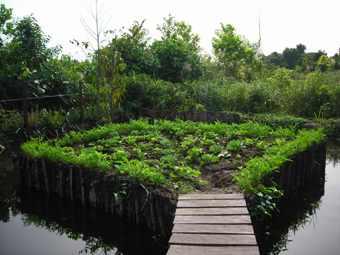 Fishpond - Kampung Konservasi
