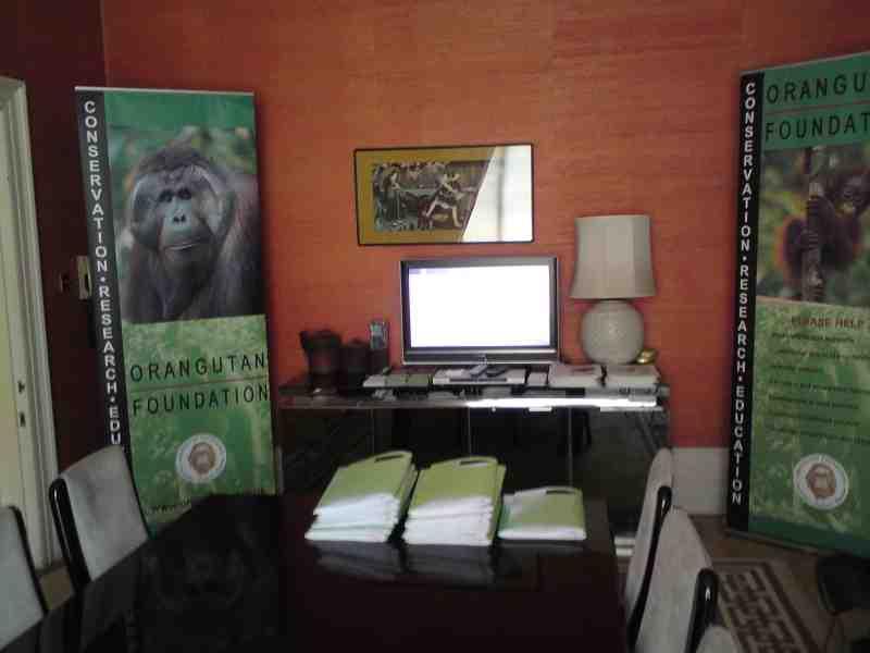 Orangutan Foundation Display
