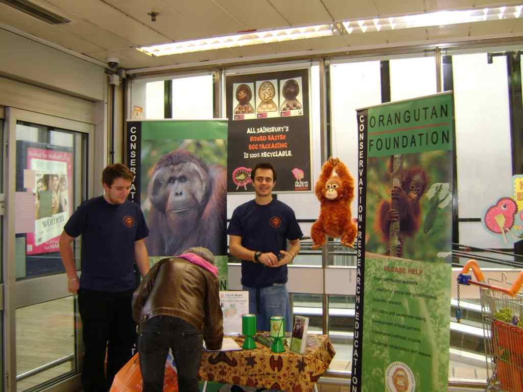 Volunteers & Nick the orangutan