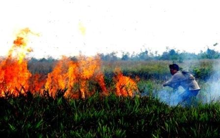 Fire breakout