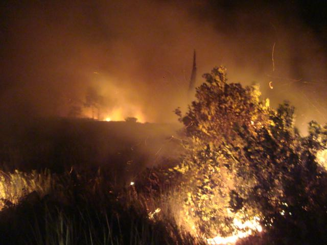 Fires in Kalampangan, Kalimantan , Indonesian Borneo