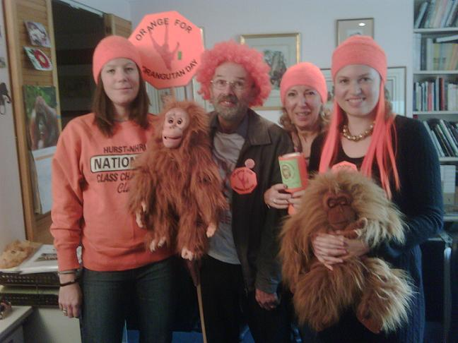 Orangutan Foundation London office -going orange