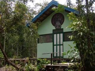 Camp Mangkung orangutan release site