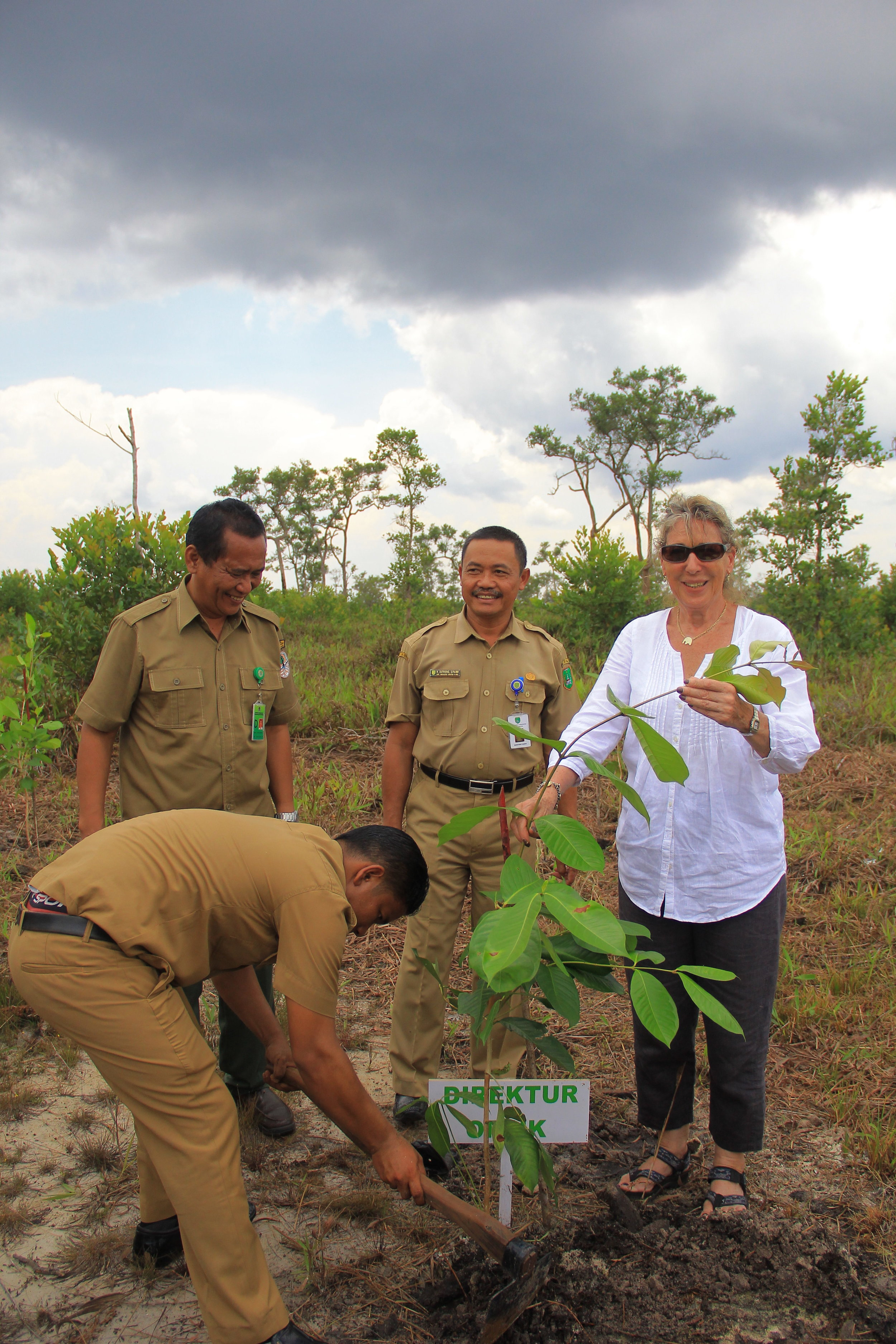 OF Director Ashley Leiman OBE planting a tree. Image© Orangutan Foundation.