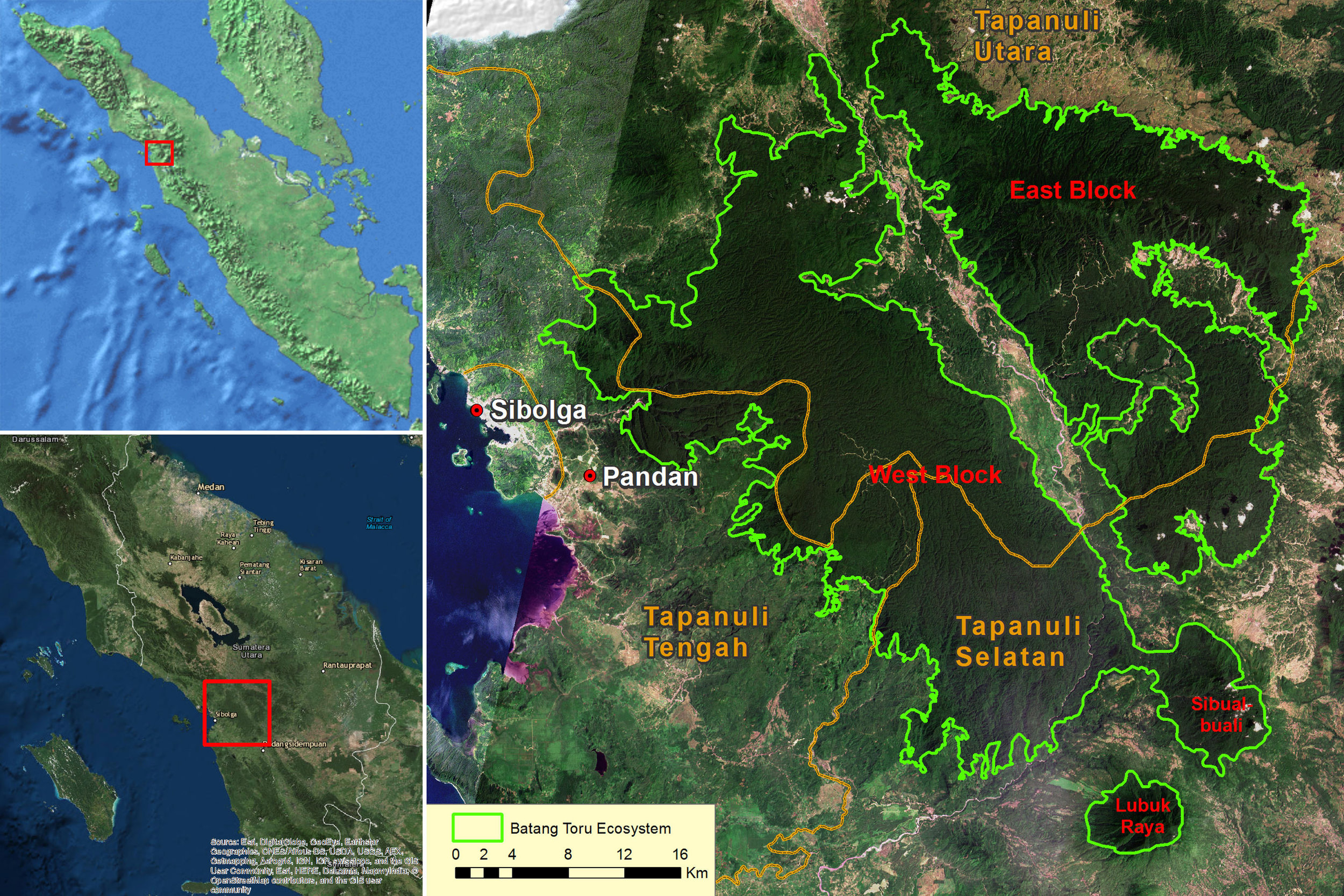 Map of Batang Toru Ecosystem, fragmented forest sections shown in orange.