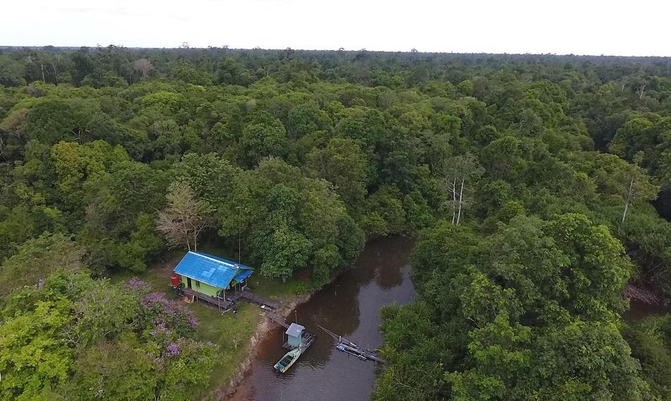 Orangutan Foundation guard post in Lamandau Wildlife Reserve