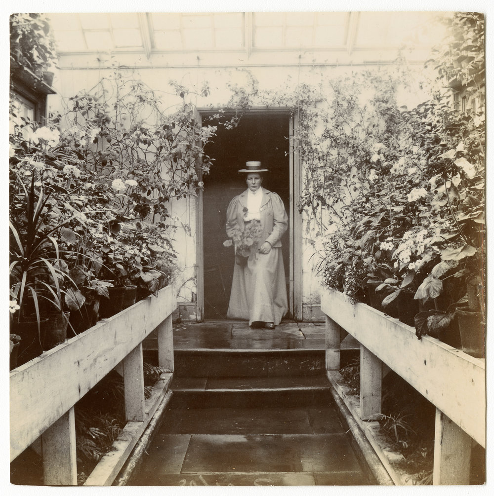 In a conservatory lined with potted plants, a lady poses inside a door way holding a plant in her right hand - about 1900.