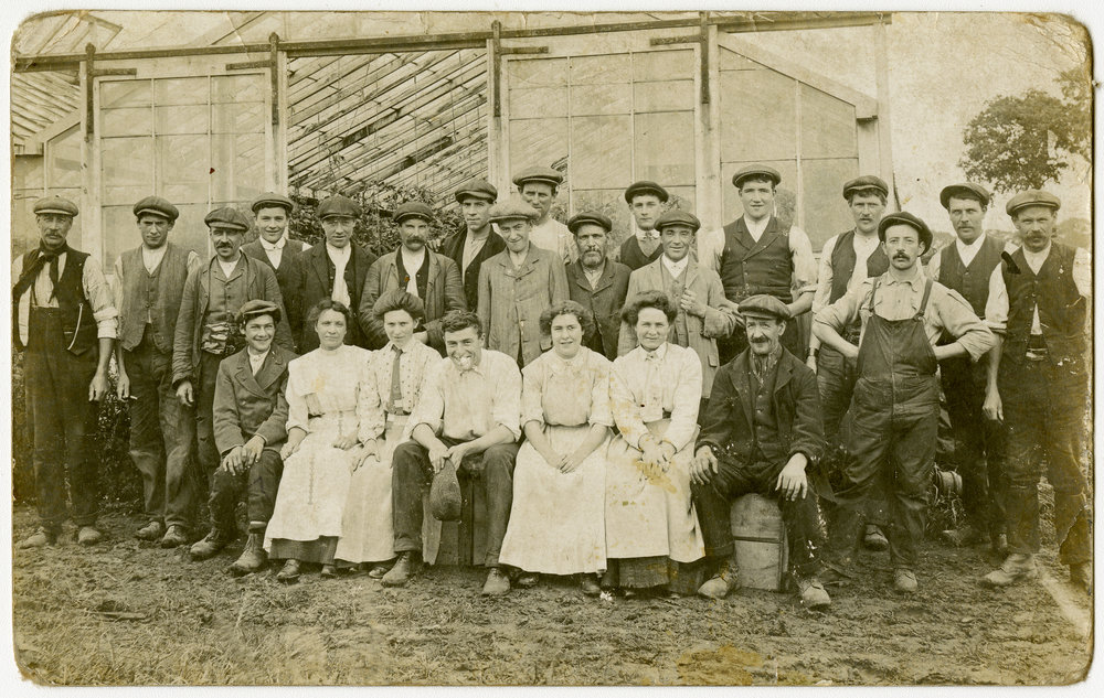 Gardeners of a commercial nursery, probably growing tomatoes, pose together outside the large glasshouse - about 1910.