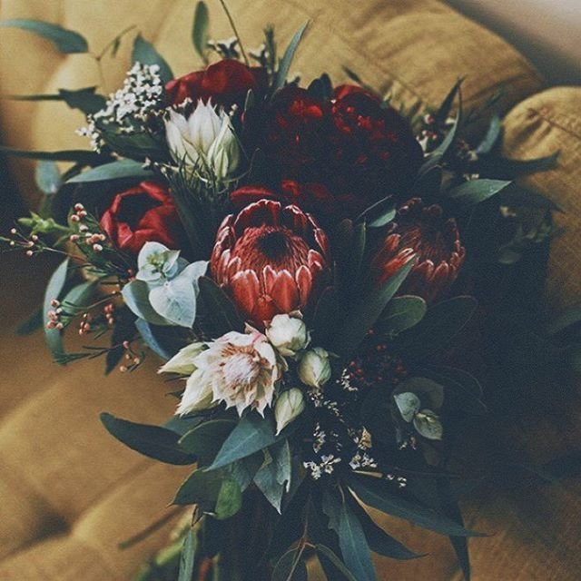 Is anybody else as obsessed with wild flowers as I am? Hope you all had a wonderful Valentine's Day full of love, laughs, and your favourite flowers! #love #flowers #wild #valentinesday #valentines #antibridetribe #rocknrollbride #alternativebride #bohobride