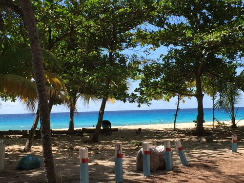 Wander Barbados: Best Beginner Surf Beaches