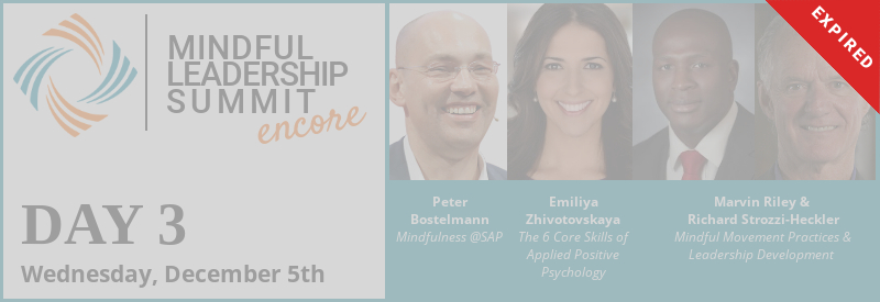 Day 3 - Encore of 5th Mindful Leadership Summit Available Wednesday, December 5 7AM EST Expires Thursday, December 6 7AM EST