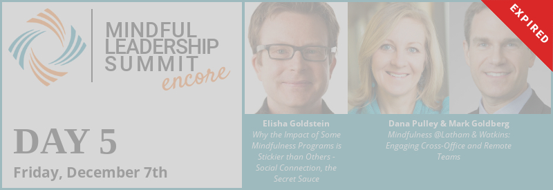 Day 5 - Encore of 5th Mindful Leadership Summit Available Friday, December 7 7AM EST Expires Saturday, December 8 7AM EST
