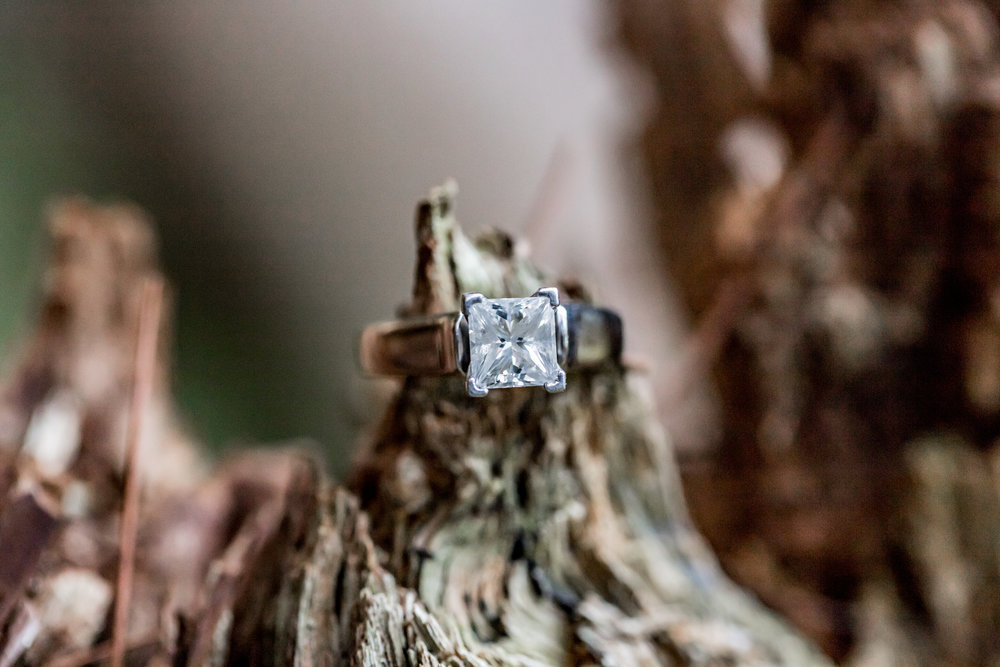 Rustic Wisconsin Engagement Ring Photo