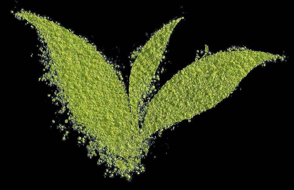 matcha powder leaf.png