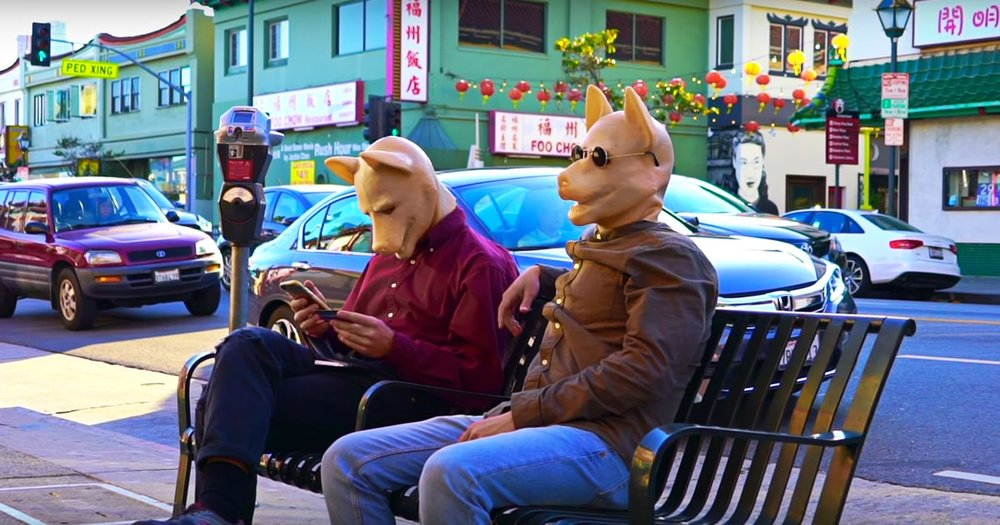 SOURCE:  https://www.rollingstone.com/music/news/watch-mac-demarcos-goofy-sun-dappled-this-old-dog-video-w474217