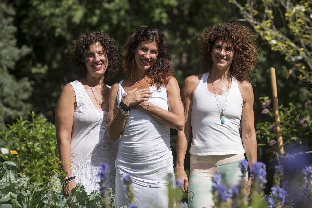 Shine Sisters Garden