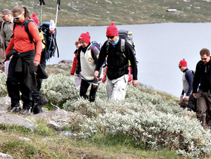 Hiking  Enjoy an outdoors aperitif! In the summer we will take you down to Buvannet lake and in the winter to a gapahuk, a traditional Norwegian shelter in the forest. Homemade ham snacks are served along with good drinks.