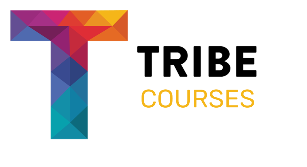 Tribe Courses... - These are carefully selected training programmes delivered by business experts on key aspects of business development essential learning for those starting up or growing new businesses.Our courses are delivered by our pool of business experts from York based businesses of all shapes and sizes. The courses will run quarterly and the subject of each training course is based on an essential aspect of setting up or running a successful business such as website development, marketing, branding, developing and measuring your social impact, business planning, building a customer base, accounting and company administration.Tribe Courses are designed to be interactive and help participants to solve the problems they will face in the first 18 months of any new business venture.Tribe Courses will all have a different topic but each will also contain details about how to use and develop your social purpose within your organisation.