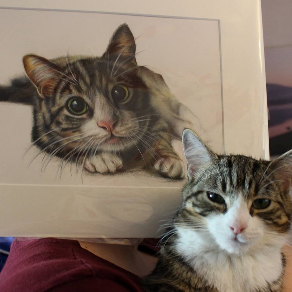 Tabby Cat Portrait in Reading by sema martin, Wall Print, Realism Fine Art, Cat lover gift, Gifts for her, Wall art print, Birthday gifts, Cat art, Gift cat décor