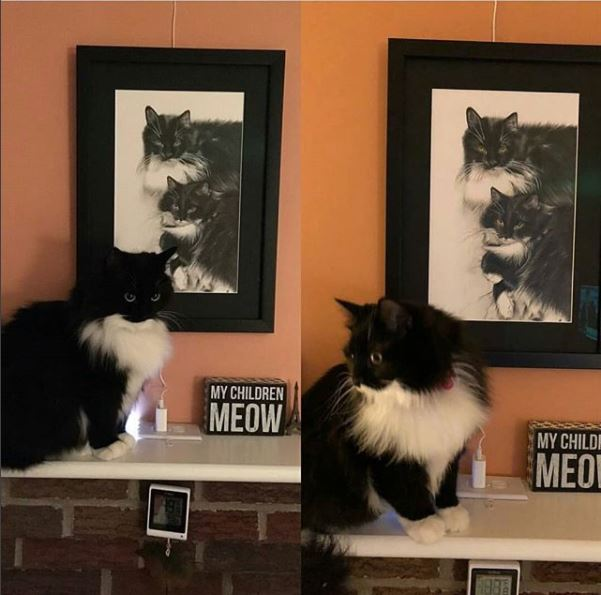 zoe and zara with their picture.JPG