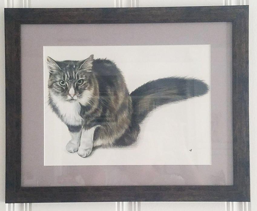 'Socks' Cat Portrait, USA