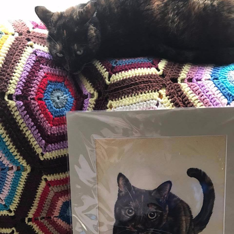 Mimi Pet Portrait