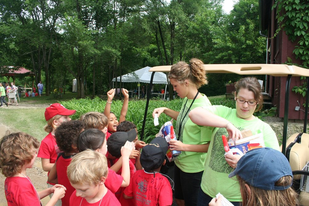 volunteer-ice-pops-art-science-woods.jpg