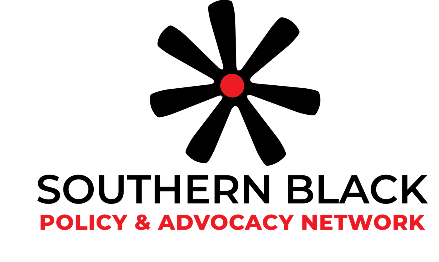 Southern Black Policy and Advocacy Network
