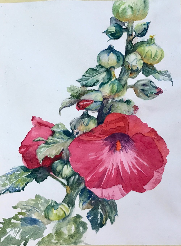 Elegance - watercolor