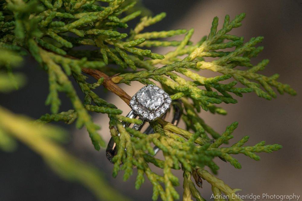 Alex  Zack Wedding Vendors Blog-3.jpg