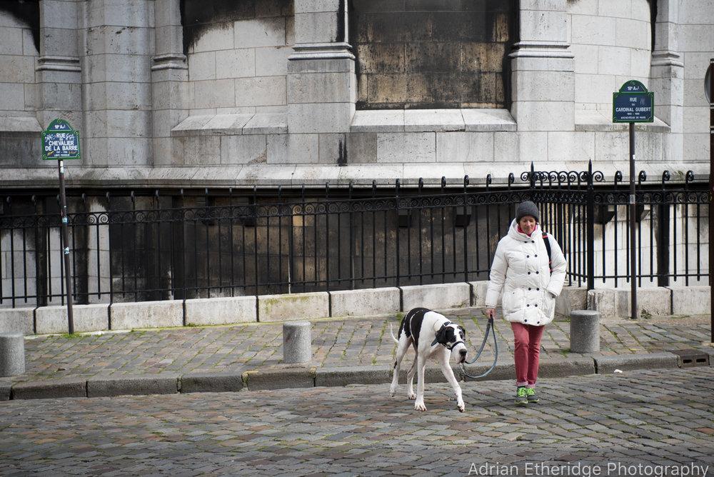 Paris 2016-111.jpg