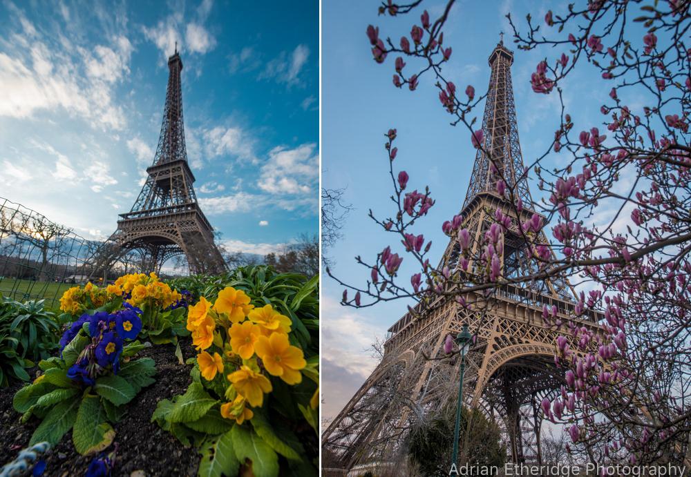 Paris Print Blog Post 8.jpg