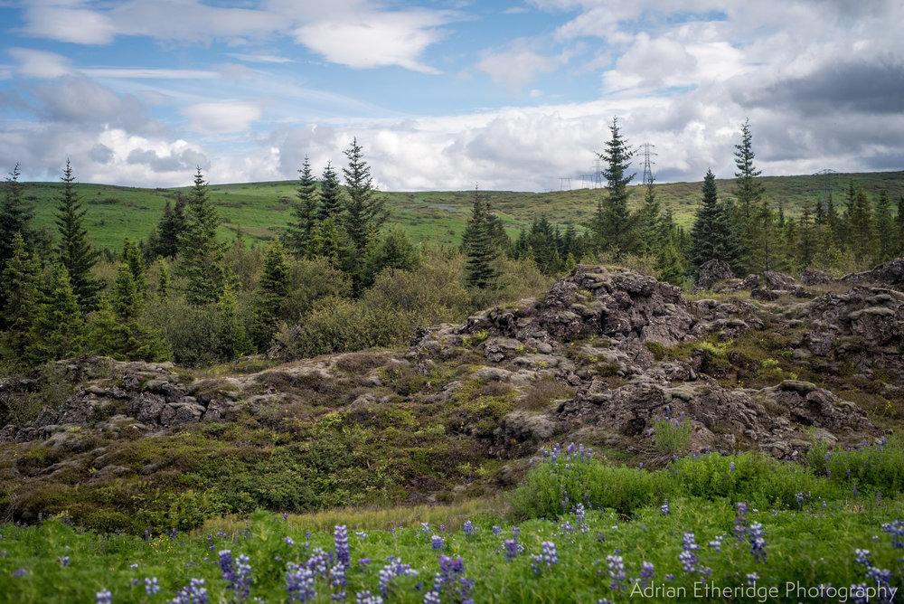 Scotland  Iceland Rest-26.jpg