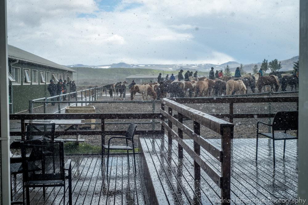Scotland  Iceland Rest-28.jpg